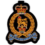 Army and Regimental Blazer Badges
