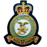 RAF Personnel & Training Command Wire Blazer Badge