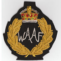Women's Auxiliary Air Force Wire Blazer Badge