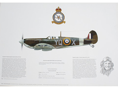 Spitfire and other RAF aircraft posters