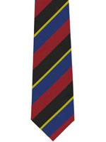 A University Polyester Striped Tie