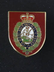Northumberland Fusiliers, Pin Badge