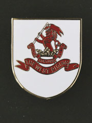 West Riding Regiment, Pin Badge
